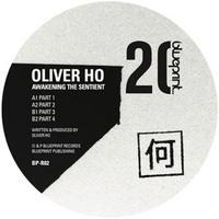 soirée Oliver Ho