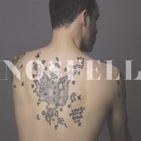 concert Nosfell