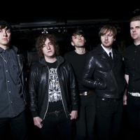 concert The Pigeon Detectives