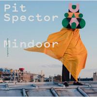 concert Pit Spector