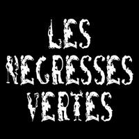 concert Les Negresses Vertes
