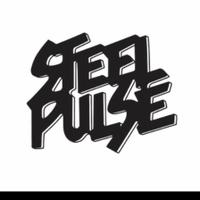 concert Steel Pulse