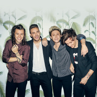 concert One Direction