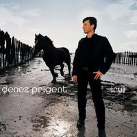 concert Denez Prigent