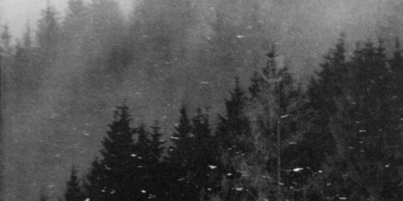 Vinterriket