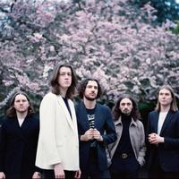 concert Blossoms