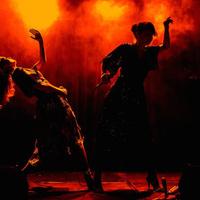 concert Nouvelle Vague