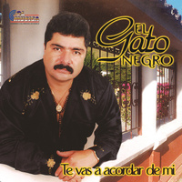 concert El Gato Negro