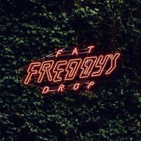 concert Fat Freddy's Drop