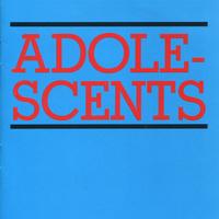 concert The Adolescents
