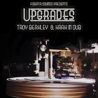 concert Troy Berkley