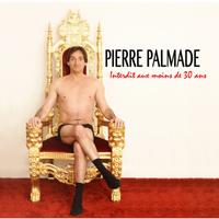concert Pierre Palmade