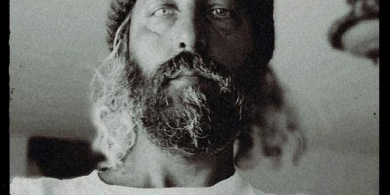 Herman Düne