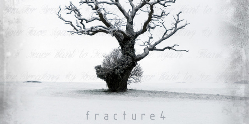 Fracture 4