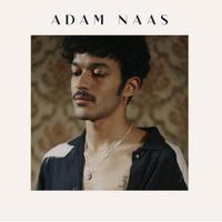concert Adam Naas