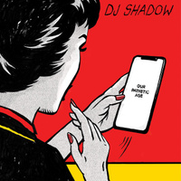 concert DJ Shadow